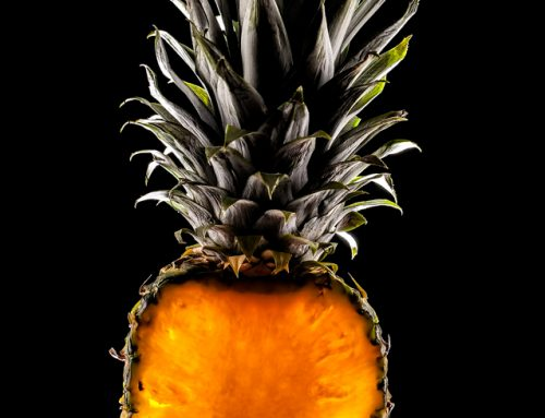 Pineapple  © Stelianos Frangis | www.photo-grafia.com
